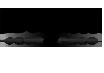 delizioso_skincare_website_logo3_1432785884__89872